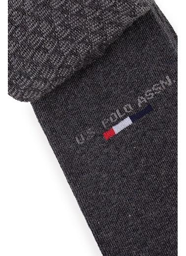 U.S. Polo Assn. 2'li Çorap Gri
